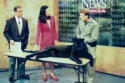 Craig and Vultar make news studio appearance